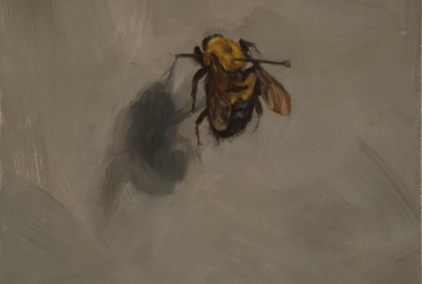 "Honey Bee oil on panel 5"" x 5"" 2014"